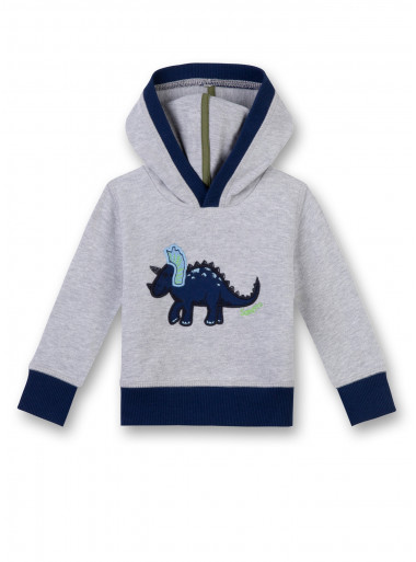 Sanetta Kidswear Kapuzensweater Dino